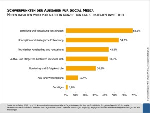 Social-Media-Delphi-Schwerpunkte-der-Ausgaben