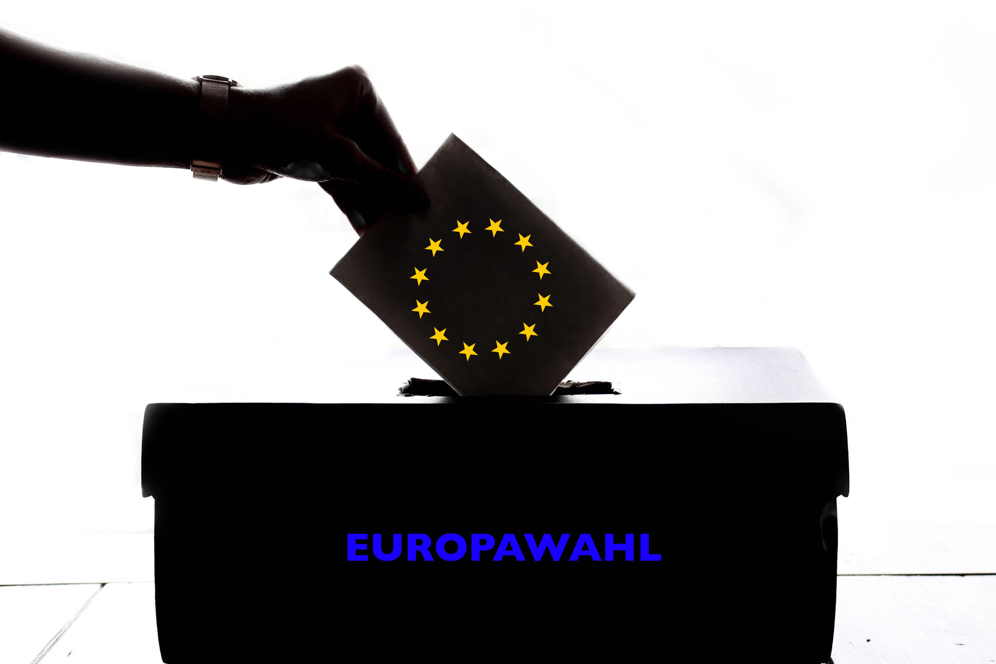 Europawahl 2019 Fink & Fuchs