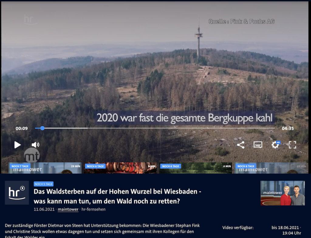 Fink Fuchs Waldprojekt Hohe Wurzel HR Maintower